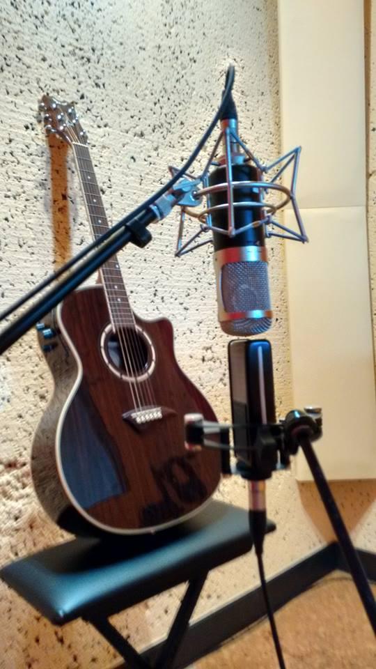 ck12_microphone_capsule_-_V